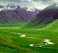 İnterneti en çok kullanan ülke: İzlanda