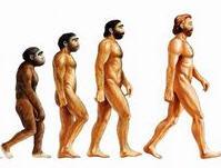 Darwin'in belgeleri artık internette