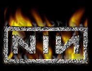 Nine Inch Nails'in son albümü internette