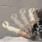 Düşünceyle robot kolu hareket ettirildi