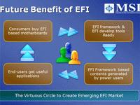 Sonuç: Gelecek EFI'de