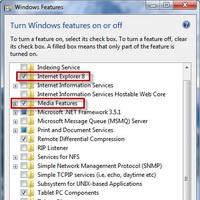 Windows 7 sadece istediğinizi sunacak