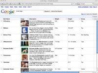 Google Squared: Arama motoruna taze doping