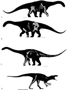 Avustralya dinozor cenneti haline geldi.
