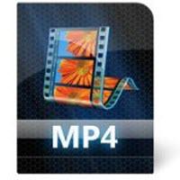 Dosya türleri: AVI, MPEG...