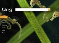 Yahoo reklam satacak Bing arama yapacak!