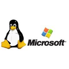 Microsoft'tan Linux için geliştirici araçları