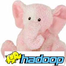 Hadoop da kimin nesi?
