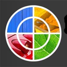 Monitörünüzün renkleri gerçekten ne kadar düzgün?