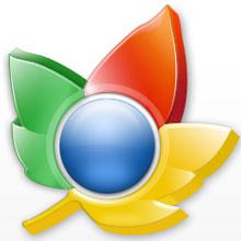 Chrome'un pazar payı