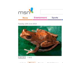 MSN'in tasarımı değişiyor