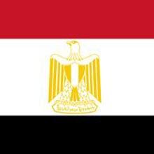 Mısır ICANN kararından ilk yararlanan ülke oldu