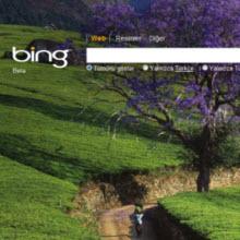 Bing'in yeni silahı!
