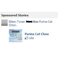 Resminiz artık Facebook reklamlarında çıkabilir!