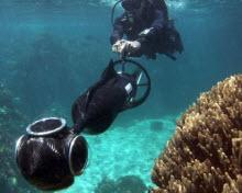Google şimdi de deniz altında
