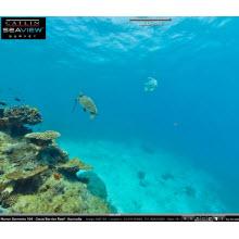 """Büyük Mercan Resifi için """"StreetView sitesi""""!"""