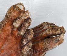 Ötzi'nin bize gösterdikleri...