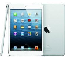 iPad Mini hakkında büyük eleştiri