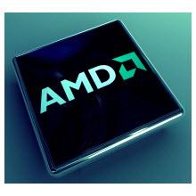 AMD Opteron A1100 işlemcilerin destekledikleri