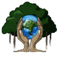 Yaklaşık 2016 ağacın kesilmesi önlendi!