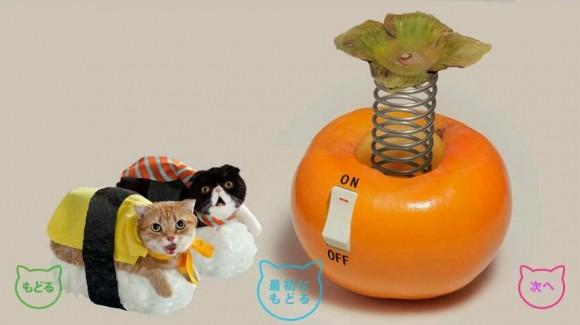 4- Sushi Cats