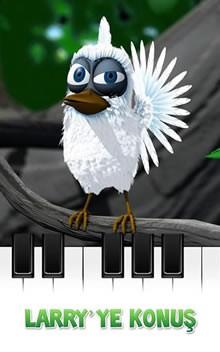 Konuşan Kuş Larry
