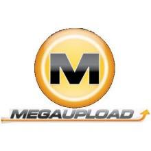 MegaUpload, sunucularını geri istiyor!