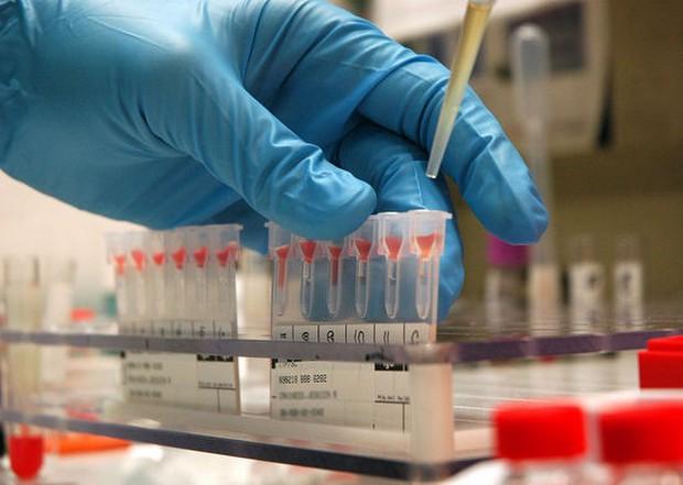 Kan gruplarının farkı