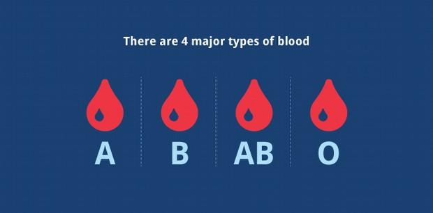 Hayvanlarda kan grupları