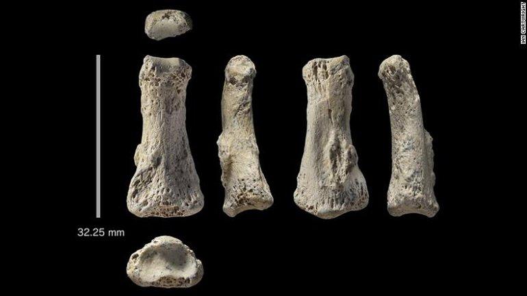 Tarihi Değiştirecek Parmak Fosili
