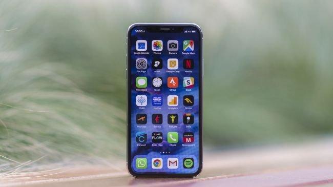 1. iPhone X