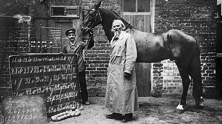 """1900'lerde İnsanların Kafasına Karıştıran """"Konuşan At"""" Hans'ın Hikayesi!"""